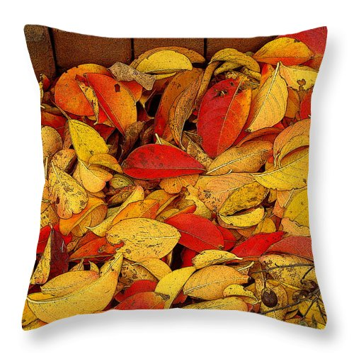 Fine Art Throw Pillow featuring the photograph Autumn Remains 2 by Rodney Lee Williams