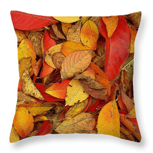 Fine Art Throw Pillow featuring the photograph Autumn Remains by Rodney Lee Williams