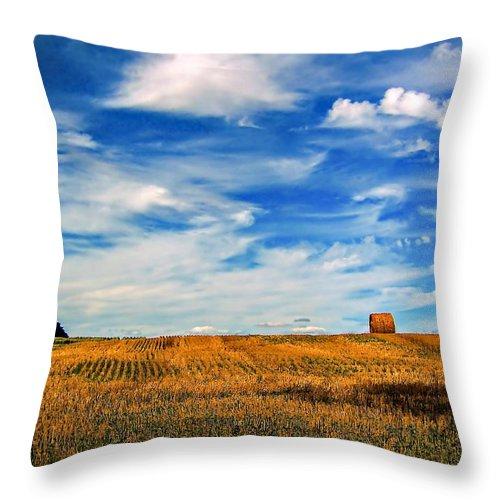 Ontario Throw Pillow featuring the photograph Autumn Sky by Steve Harrington