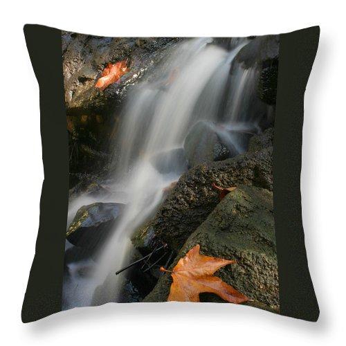 Stream Throw Pillow featuring the photograph Autumn Stream by Doug Dailey