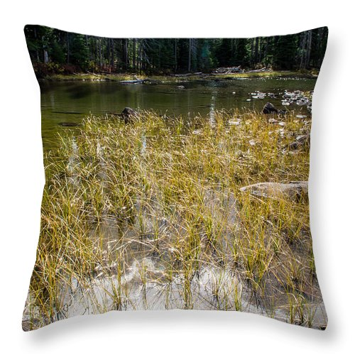 Mountain Throw Pillow featuring the photograph Autumn Sun On Mountain Pond by Mick Anderson
