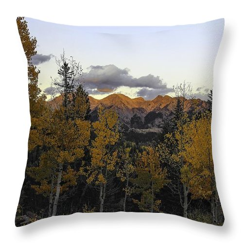 Landscape Throw Pillow featuring the photograph Autumn Sunset by Bill Sherrell