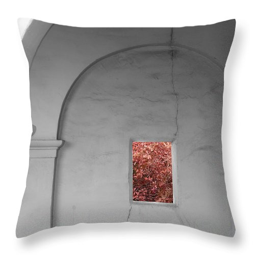 Architecture Throw Pillow featuring the photograph Autumn View by Doug Dailey