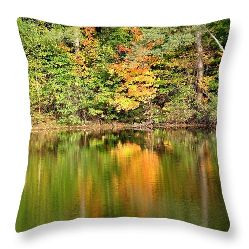 Autumn Throw Pillow featuring the photograph Autumn Watercolor Reflections by Rose Santuci-Sofranko