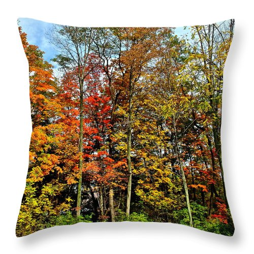 Autumn Throw Pillow featuring the photograph Autumnal Foliage by Frozen in Time Fine Art Photography