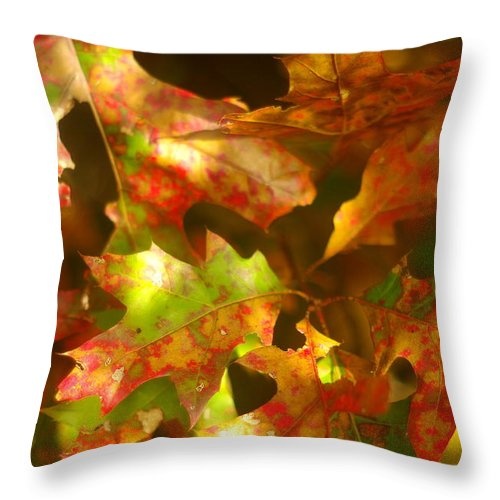 Red Oak Throw Pillow featuring the photograph Autumn's Red Oak Leaves by Suzanne Powers