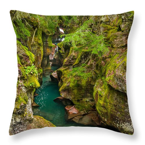 Glacier National Park Throw Pillow featuring the photograph Avalanche Gorge In September by Greg Nyquist