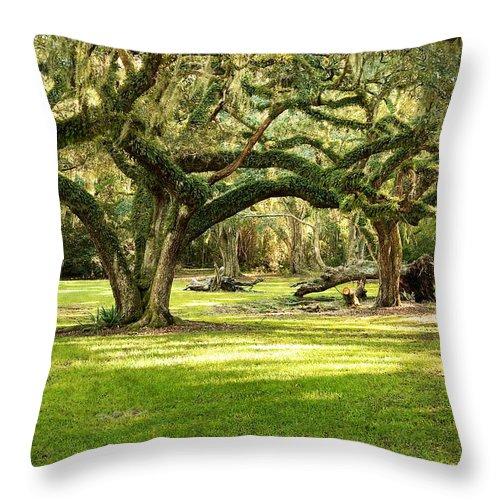 Oak Trees Throw Pillow featuring the photograph Avery Island Oaks by Scott Pellegrin