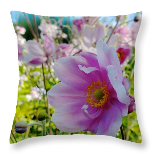Ireland Throw Pillow featuring the photograph Avoca Wildflowers by David Beebe