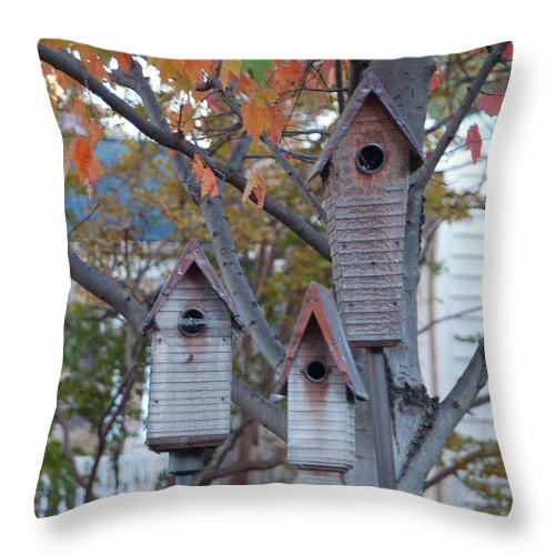 Birdhouse Throw Pillow featuring the photograph Awaiting Spring by Suzanne Gaff
