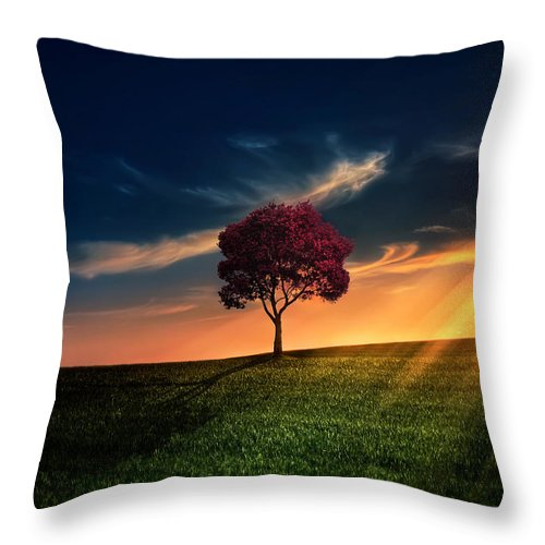 Agriculture Throw Pillow featuring the photograph Awesome Solitude by Bess Hamiti