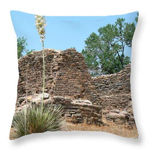 Aztec Ruins National Monument Throw Pillow featuring the photograph Aztec Ruins National Monument by Laurel Powell