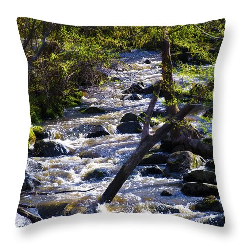 Babbling Throw Pillow featuring the photograph Babbling Brook by Bill Cannon