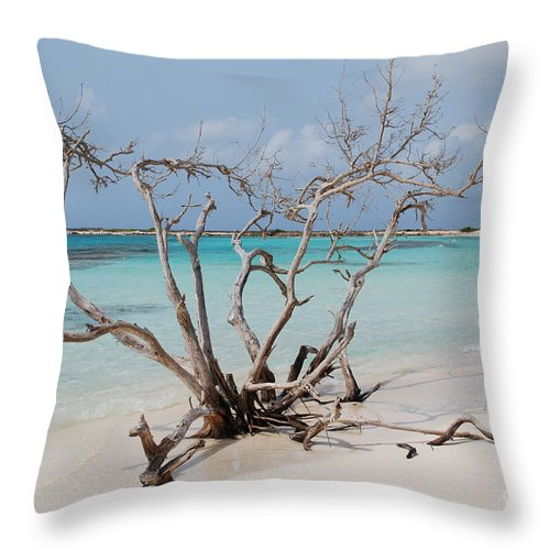 Baby Beach Throw Pillow featuring the photograph Baby Beach by DejaVu Designs