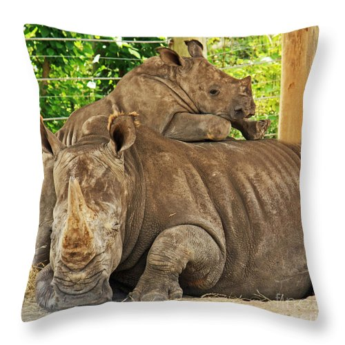 Rhinoceros Throw Pillow featuring the photograph Baby Rhino And Mom by Terri Mills