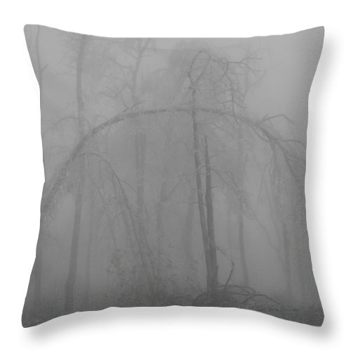 Winter Throw Pillow featuring the photograph Back Breaking Ice by Diannah Lynch