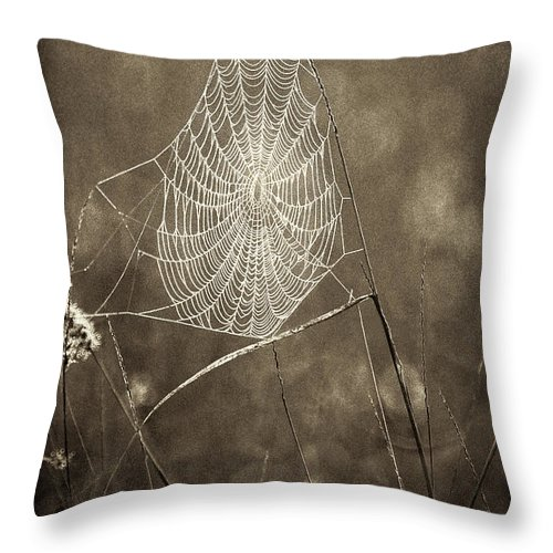 Wildlife Throw Pillow featuring the photograph Backlit Spider Web In Sepia Tones by Dave Welling