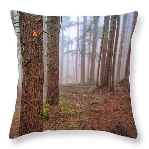 Autumn Throw Pillow featuring the photograph Baden Powell Trail Marker by James Wheeler