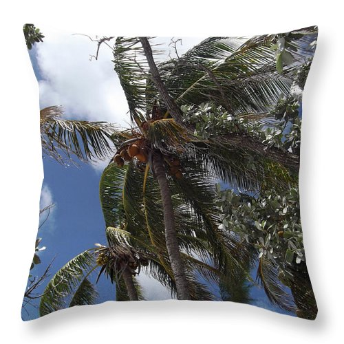 Palm Trees Throw Pillow featuring the photograph Bahamas Sky by Katherine Williams