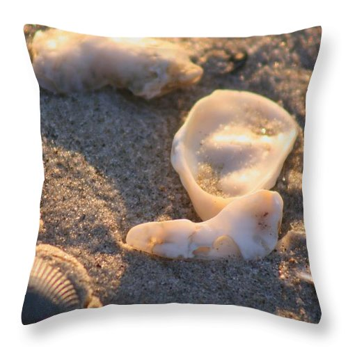 Shells Throw Pillow featuring the photograph Bald Head Island Shells by Nadine Rippelmeyer