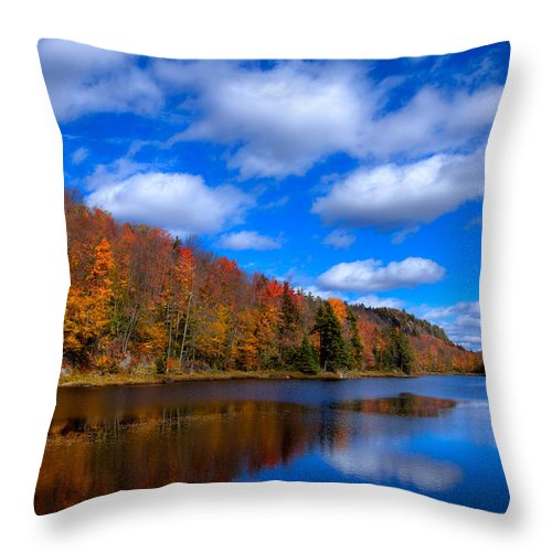 Adirondack's Throw Pillow featuring the photograph Bald Mountain Pond In Autumn by David Patterson