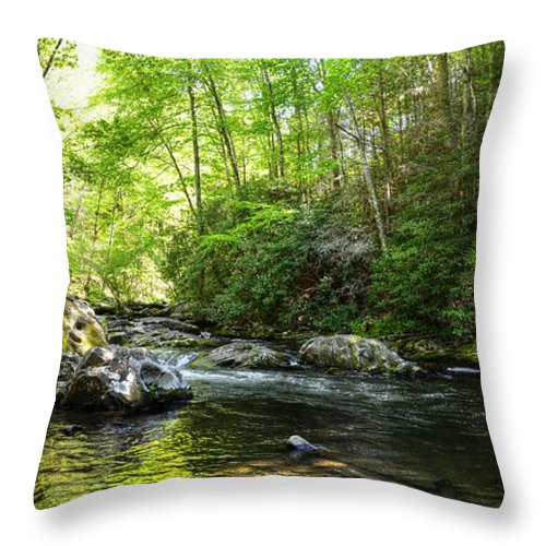 Hdr Throw Pillow featuring the photograph Bald River by Paul Mashburn