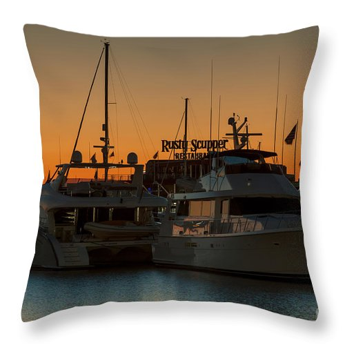 Clarence Holmes Throw Pillow featuring the photograph Baltimore Inner Harbor Marina At Dawn I by Clarence Holmes