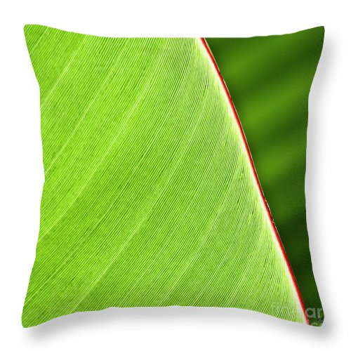 Leaf Throw Pillow featuring the photograph Banana Leaf by Heiko Koehrer-Wagner