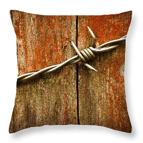 Rust Throw Pillow featuring the photograph Barbed Wire On Wood by Ruth Valasini