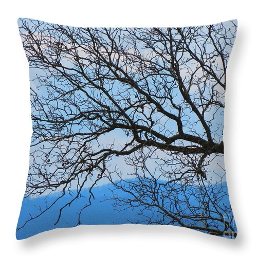 Tree Throw Pillow featuring the photograph Bare Tree Against Blue Sky by Anita Adams