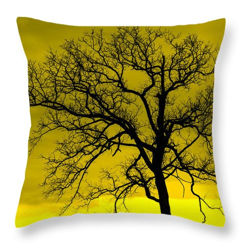 Tree Throw Pillow featuring the photograph Bare Tree Against Yellow Background E88 by Wendell Franks