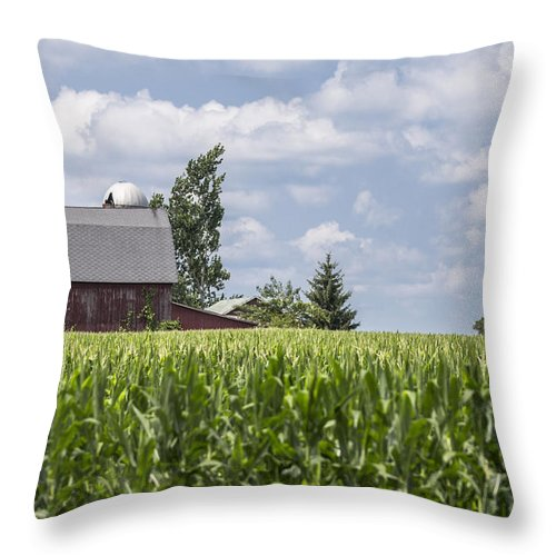 Michigan Throw Pillow featuring the photograph Barn And Corn by John McGraw
