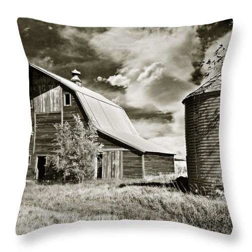 Barns Throw Pillow featuring the photograph Barn And Silo by John Anderson