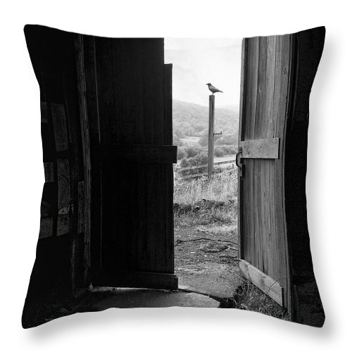 Black And White Throw Pillow featuring the photograph Barn Door - View From Within - Old Barn Picture by Gary Heller