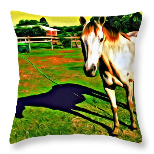 Horse Barn Reflection Throw Pillow featuring the photograph Barn Horse by Alice Gipson