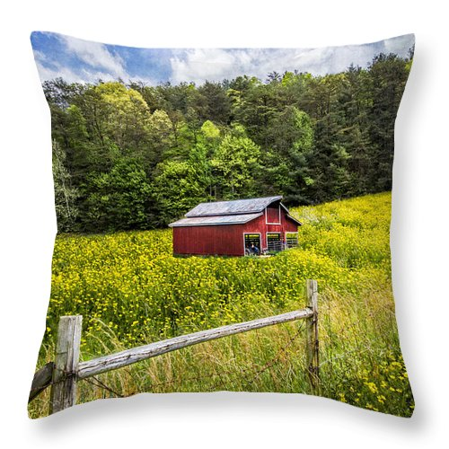 Appalachia Throw Pillow featuring the photograph Barn In The Meadow by Debra and Dave Vanderlaan