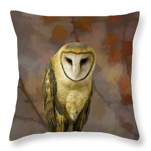 Alba Throw Pillow featuring the photograph Barn Owl by Jack R Perry