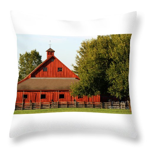 Agriculture Throw Pillow featuring the pyrography Barn South-3586 by Gary Gingrich Galleries