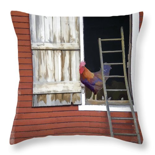 Nature Throw Pillow featuring the photograph Barnyard Rooster by Penny Pesaturo