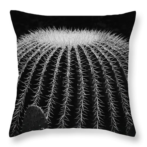 Arid Climate Throw Pillow featuring the photograph Barrel Cactus by Joel Bourgoin
