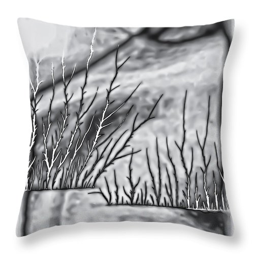 Abstract Throw Pillow featuring the photograph Abstract Trees On Barren Landscape by Walt Foegelle
