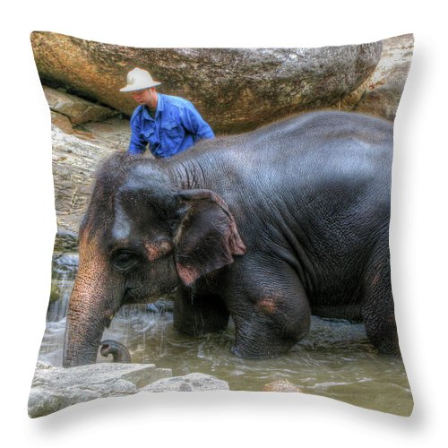 Elephant Throw Pillow featuring the photograph Bath Time by Douglas J Fisher