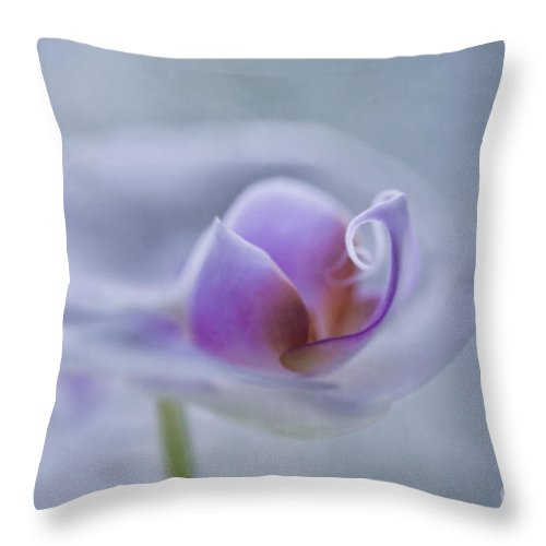 Orchid Throw Pillow featuring the photograph Bathing In Light by Maria Ismanah Schulze-Vorberg