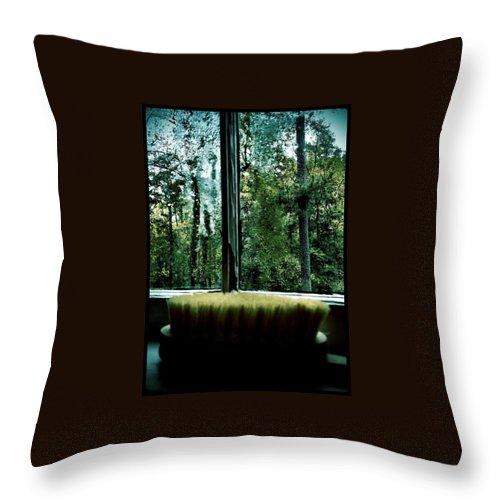 Back Brush Throw Pillow featuring the photograph Bathroom Bliss by Michele Monk
