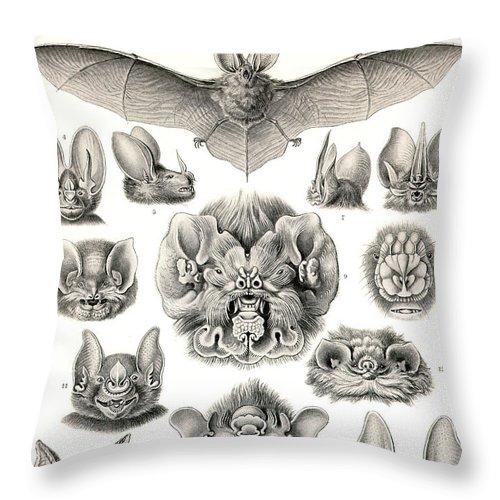 Bats Bats And More Bats Throw Pillow featuring the digital art Bats Bats And More Bats by Unknown