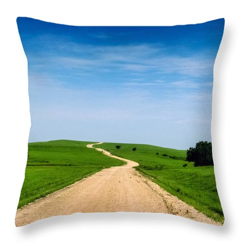 Gravel Throw Pillow featuring the photograph Battle Creek Road From The Saddle by Eric Benjamin