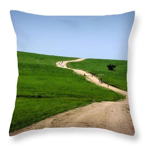 Gravel Throw Pillow featuring the photograph Battle Creek Road Teamwork by Eric Benjamin