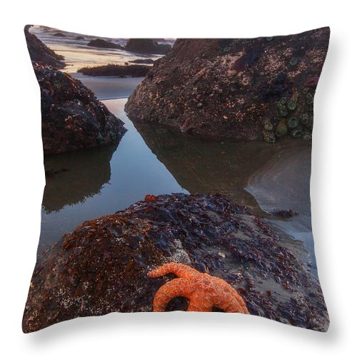 Southern Oregon Coast Throw Pillow featuring the photograph Battle Rock Sunrise by Darren White