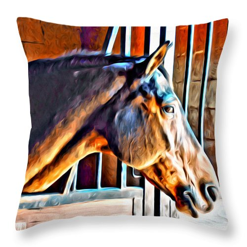 Horse Stall Barn Bay Brown Throw Pillow featuring the photograph Bay In Stall by Alice Gipson