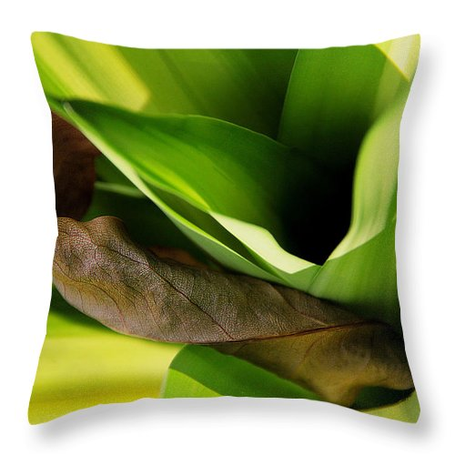 Landscape Throw Pillow featuring the photograph Be A Blessing by Miel Paculanang